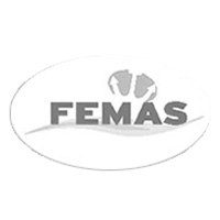 FEMAS - Federation of European Maritime Associations of Surveyors and Consultants